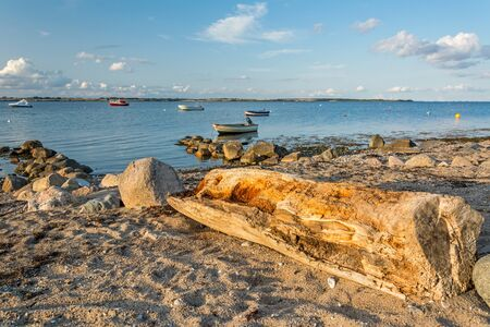 Scenic beach with old tree trunk and boats at the Baltic sea at sunset