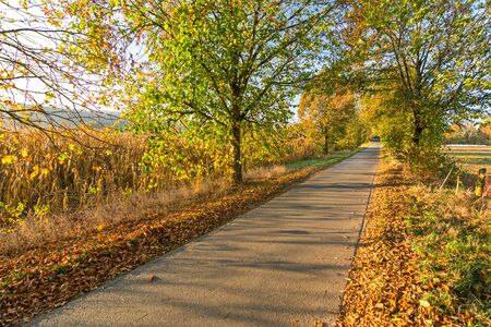 Foot path or bike lane in beautiful rural, colorful autumn landscape