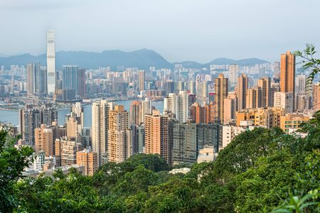Skyline of Hong Kong in the scenic evening light Фото со стока