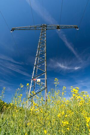 Vertical shot of a power pole in a rape field as a symbol for green electricity and renewable energies