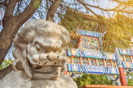 Chinese guardian lion sculpture in front of ancient Buddhist Lama temple in scenic morning light