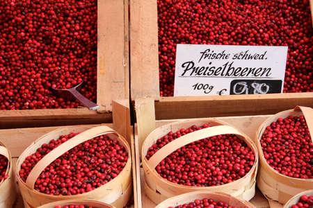 astringent: fresh lingonberry from market eatable