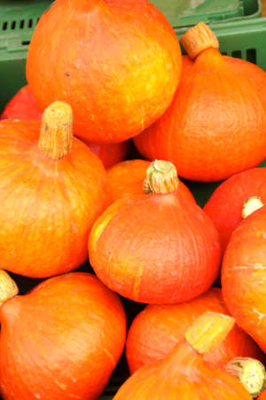 skinning: hokkaido pumpkin without skinning, just cooking ready is your soup