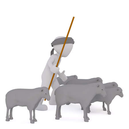 herding: 3d shepherd herding his flock of sheep with a long crook or stick, rendered cartoon illustration on white