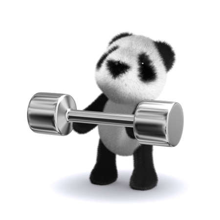 cuddle: 3d render of a panda lifting some weights Stock Photo