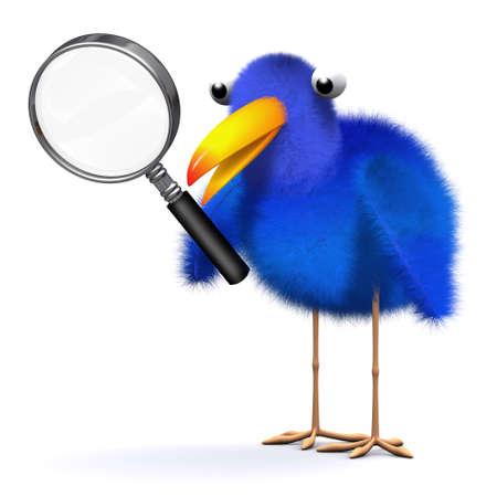 bluebird: 3d render of a bluebird with a magnifying glass Stock Photo