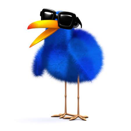 bluebird: 3d render of a bluebird wearing sunglasses