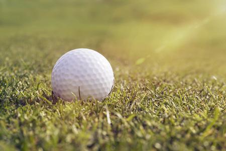 golfball: Blank gofl ball on grass with sunlight Stock Photo