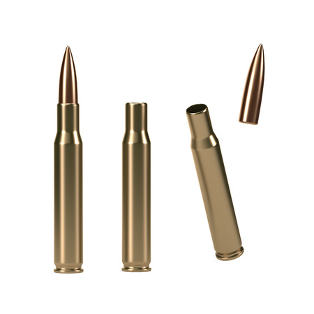 Bullet Shell Schema- 3D rendered image