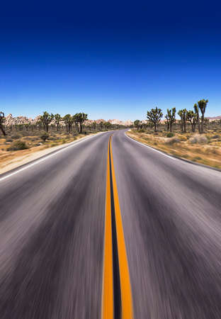 Open asphalt road in the USA national park. Straight asphalt Highway. Joshua Tree national park. High speed Stockfoto