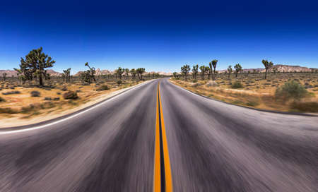 Open asphalt road in the USA national park. Straight asphalt Highway.