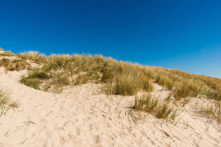 Sand beach background in Denmark. Sunny day on the sea coast. Blue Sky without clouds. Calm water background Stockfoto