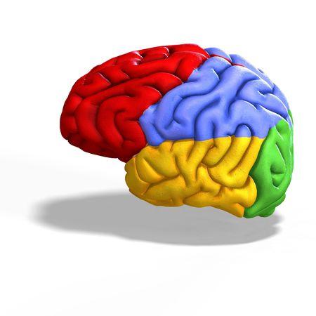 mental object: ilustraci�n esquem�tica de un cerebro humano con saturaci�n camino