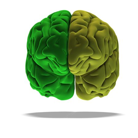 savvy: dramatical render of a human brain in green with clipping
