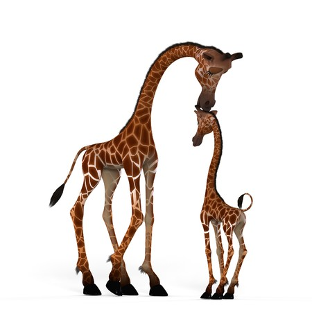 Rendered Image of a really cute animal Image contains a Clipping