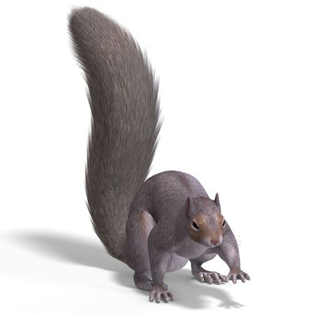 grope: Rendering of a cute Squirrel with Clipping Stock Photo