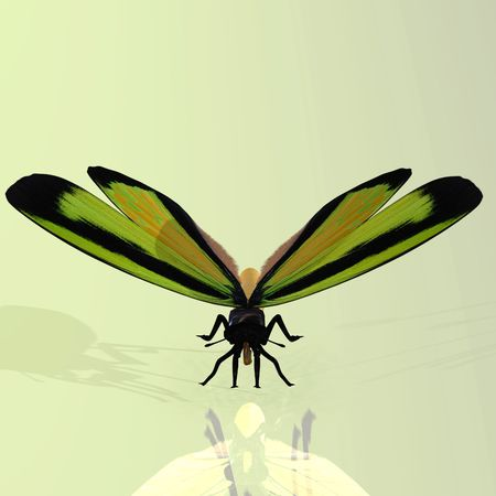 Rendered image of a beautiful butterfly - with Clipping