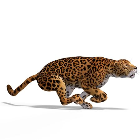 Dangerous Big Cat Jaguar With Clipping Over White Stock Photo - 5006870