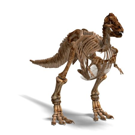 devour: rendering of a t-rex skeleton with Clipping and shaow over white