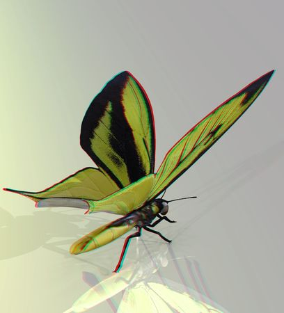 This is an anaglyph image  stereo rendering of a beautiful butterfly. The 3d effect however is only visible with red-cyan-specs (redblue-googles)