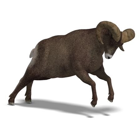 dodge: an aries ram with twisted horns. 3D render with clipping and shadow over white