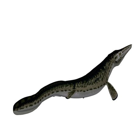 squamata: underwater dinosaur Mosasaur. 3D render with clipping and shadow over white