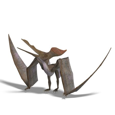 pteranodon: flying dinosuar Pteranodon. 3D render with clipping and shadow over white Stock Photo