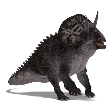assail: Dinosaur Zuniceratops. 3D render with clipping and shadow over white