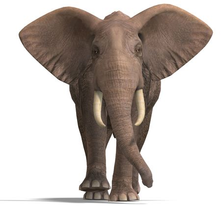 nip: giant elephant. 3D render with clipping and shadow over white Stock Photo