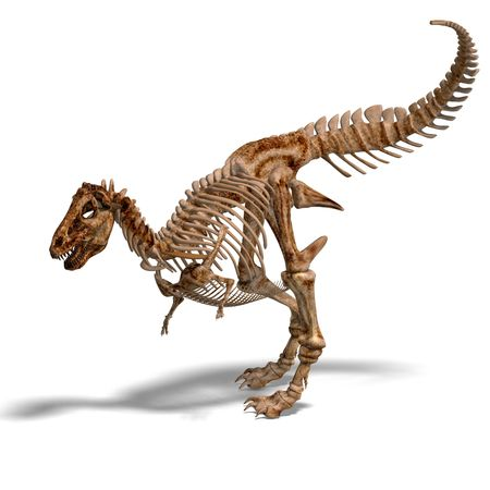 rendering of a t-rex skeleton with Clipping and shaow over white
