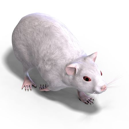 incisor: 3D rendering of a sweet hamster over white