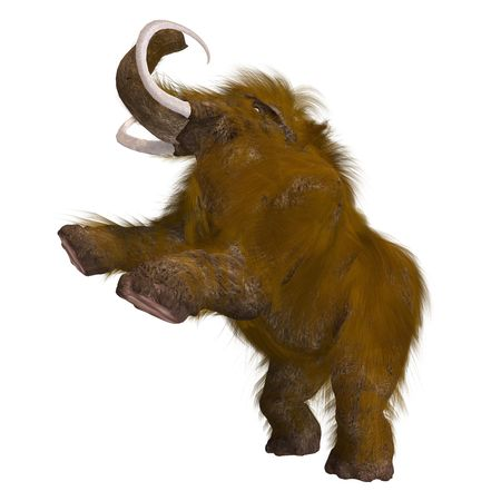 mammoth: Rendering of a Mammoth over white