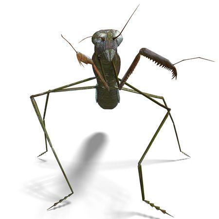 3D rendering of a praying mantis