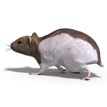 hardworking: 3D rendering of a sweet hamster Stock Photo