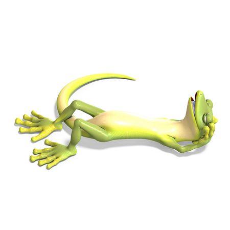 twee: funny toon gecko. 3D render  Stock Photo