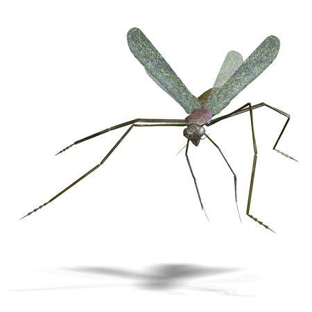 dreadful: 3D rendering of a praying mantis