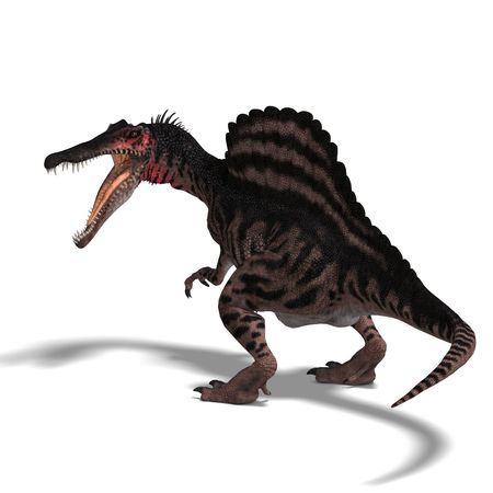 assail: dinosaur Spinosaurus. 3D render  Stock Photo
