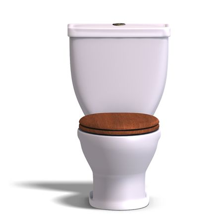 drainage: 3d rendering of a white wc and a wooden seat