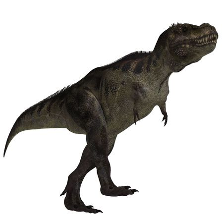 vigorousness: T-Rex. 3D render with clipping path and shadow over white