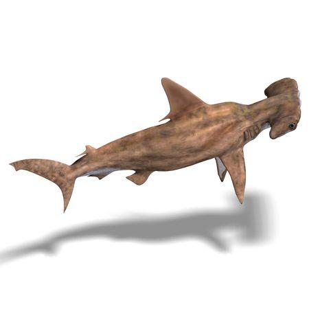 pez martillo: Representaci�n 3D de un tibur�n martillo con trazado de recorte y sombra sobre blanco