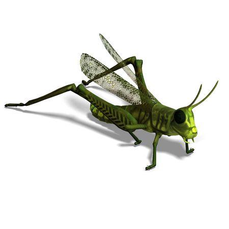 dodge: 3D rendering of a green grasshopper