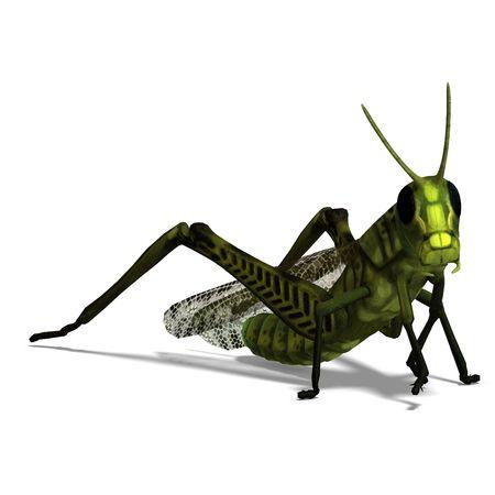 3D rendering of a green grasshopper