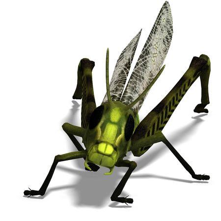 chirp: 3D rendering of a green grasshopper