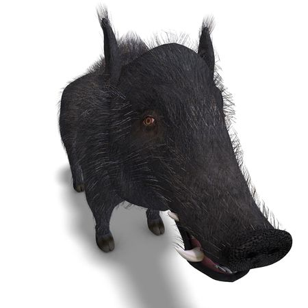enormous: 3D rendering of a dangerous black boar Stock Photo
