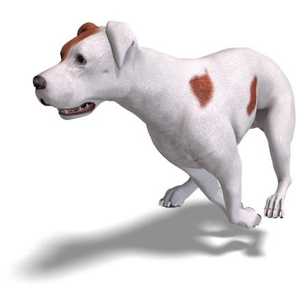 nip: Parson Russel Terrier Dog.