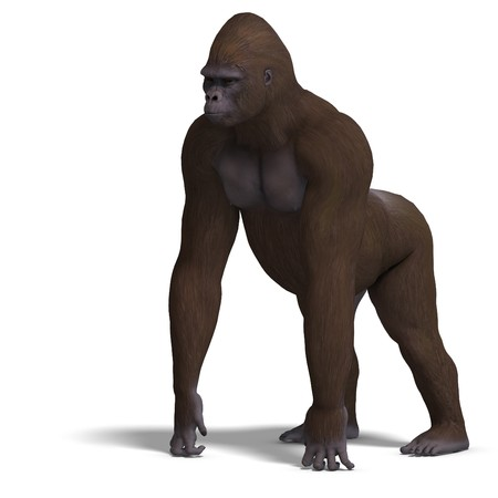 louse: gorilla on all fours.