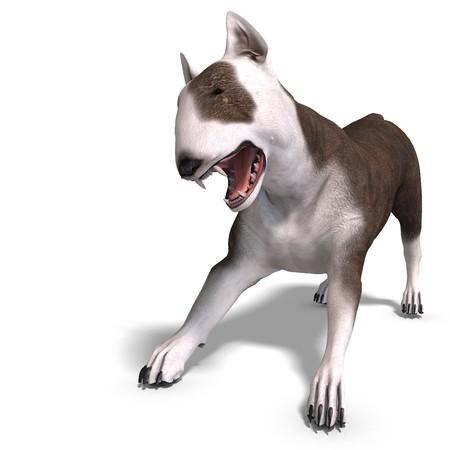 bull terrier: Bull Terrier Dog. 3D rendering