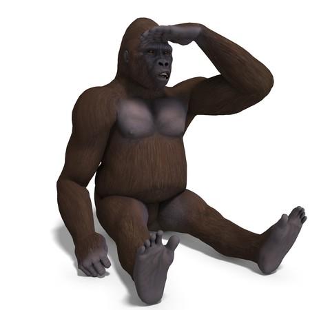 mammalia: gorilla watching something