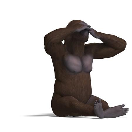 seeing: gorilla not seeing.