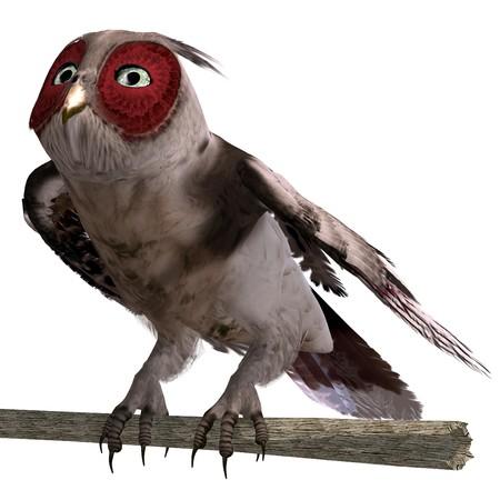 daemon: brown fantasy owl.